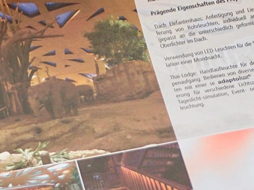 Referenzbericht Lichtprojekt: Redaktion und Text